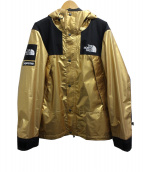 Supreme×THE NORTH FACE(シュプリーム ノースフェイス)の古着「METALLIC MOUNTAIN PARKA」