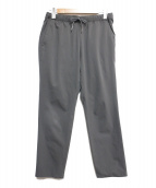 THE NORTH FACE(ザノースフェイス)の古着「APEX SURFACE RELAX PANT」|グレー