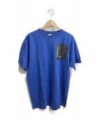 ARCTERYX(アークテリクス)の古着「プリントTシャツ」 ブルー