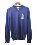 UNITED ARROWS(ユナイテッド アローズ)の古着「Vネックニット」|ブルー