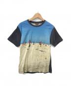 Paul Smith COLLECTION(ポールスミスコレクション)の古着「ビーチパラソルTシャツ」 ブルー×ブラック