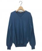 LORO PIANA(ロロピアーナ)の古着「カシミヤVネックニット」 ブルー