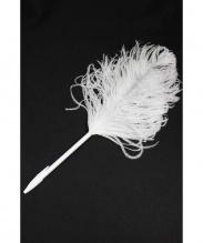 Maison Martin Margiela(メゾンマルタンマルジェラ)の古着「羽ペン」|ホワイト